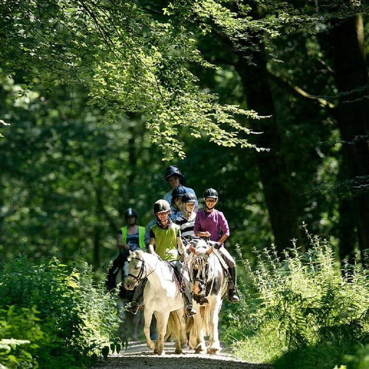 Cowboy Riding Trail for Two