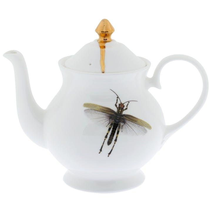 Urban Nature Dragonflies Teapot, 6 Cup