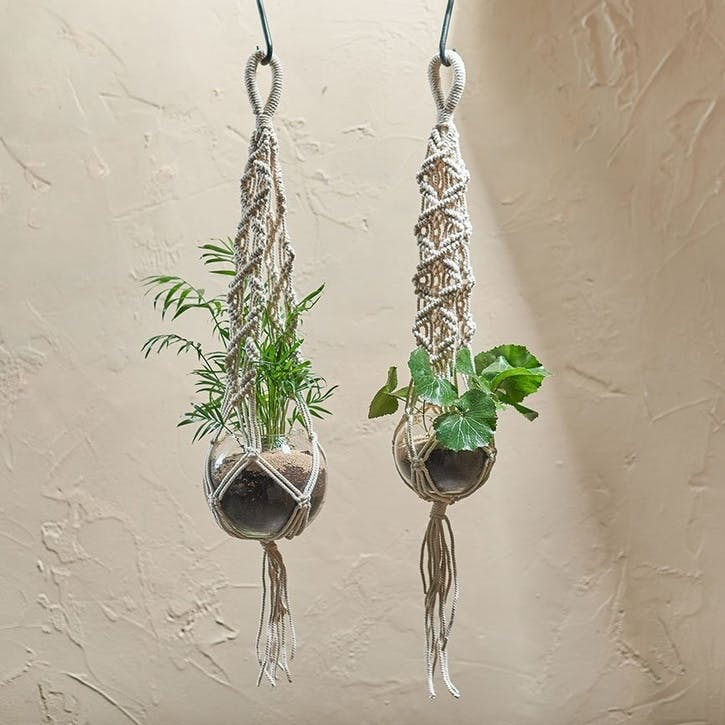 Basua Hanging Planter