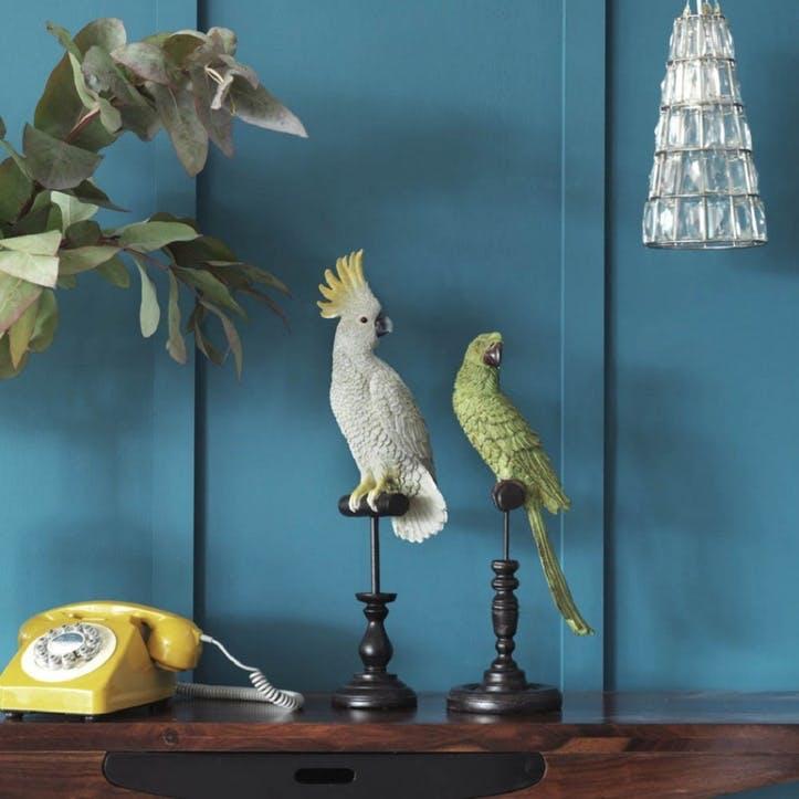 Tropical Birds On Perch, Green Parrot