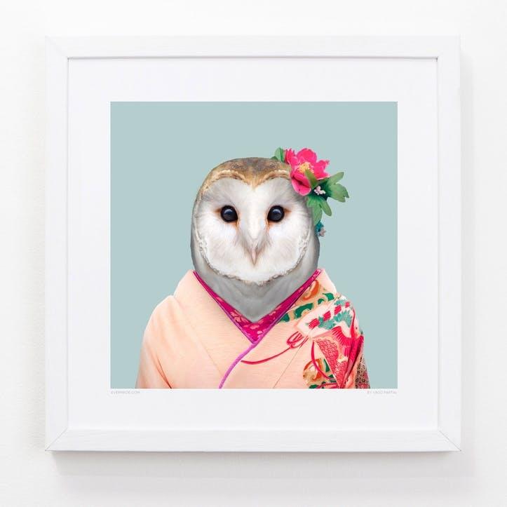Zoo Portrait Barn Owl, 33cm x 33cm