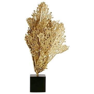 Decorative Coral Display