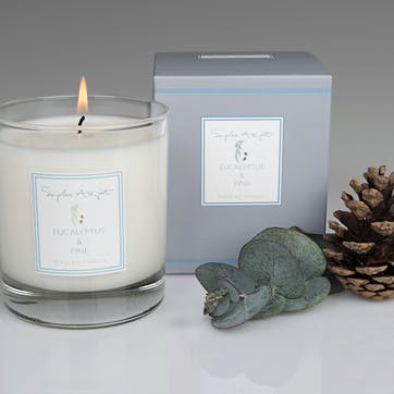 Eucalyptus & Pine Scented Candle