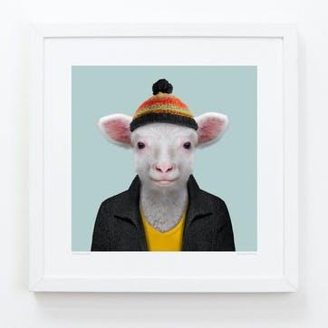 Zoo Portrait Sheep, 33cm x 33cm