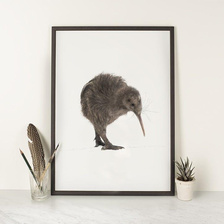 Kiwi - A4