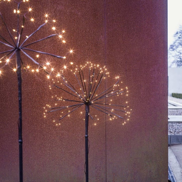 Dandelion Outdoor Light