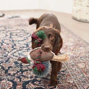 'Pheasant' Rope Dog Toy