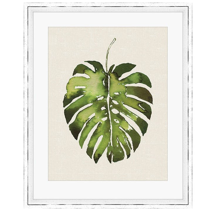 Summer Thornton Tropical Leaf I Monstera Framed Print, 55 x 45cm