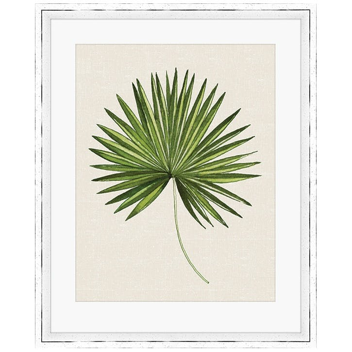 Summer Thornton Tropical Leaf III Framed Print, 55 x 45cm