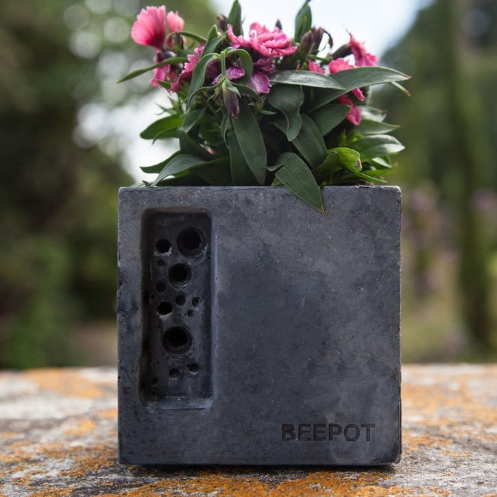 Beepot Concrete Planter and Bee House - Mini; Charcoal
