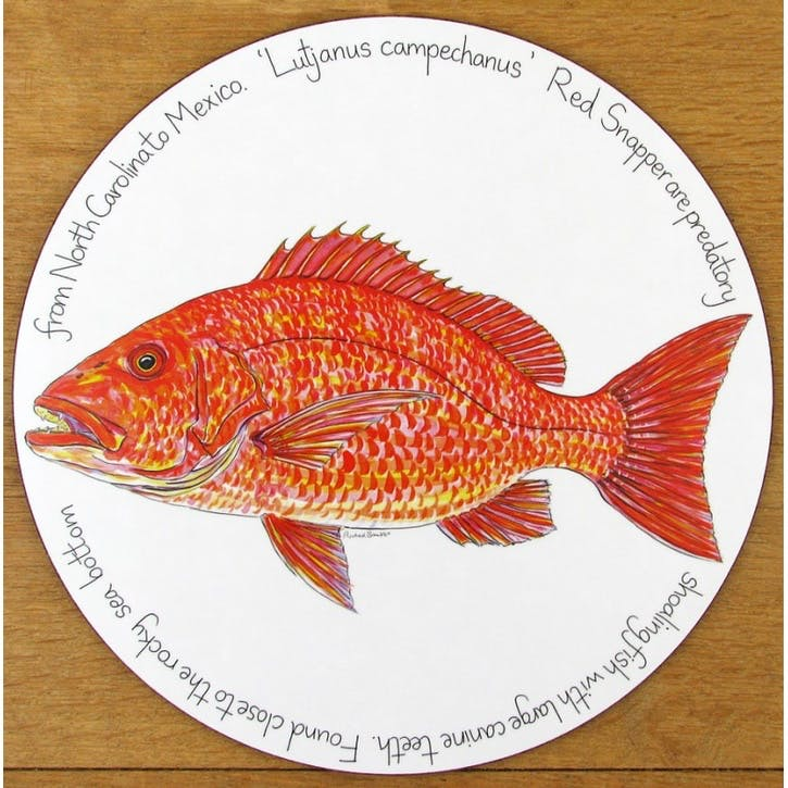 Red Snapper Tablemat - 28cm