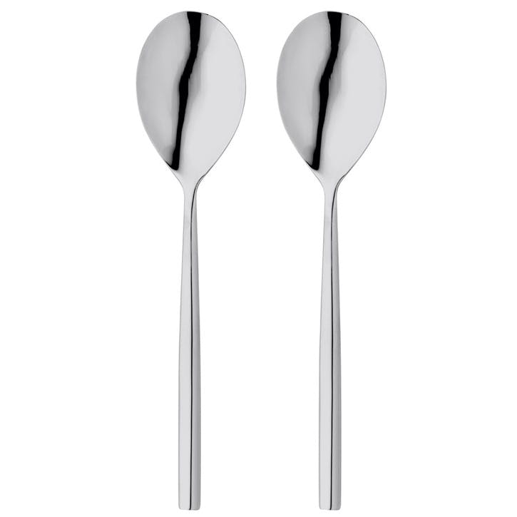 Rochester Serving Spoon Set