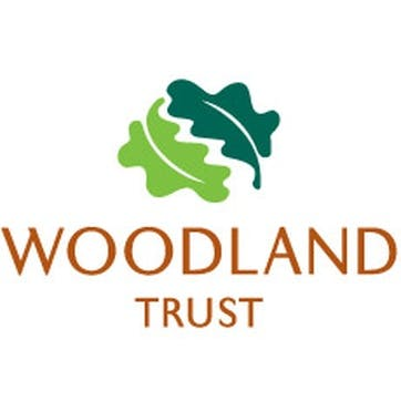 A Donation Towards The Woodland Trust