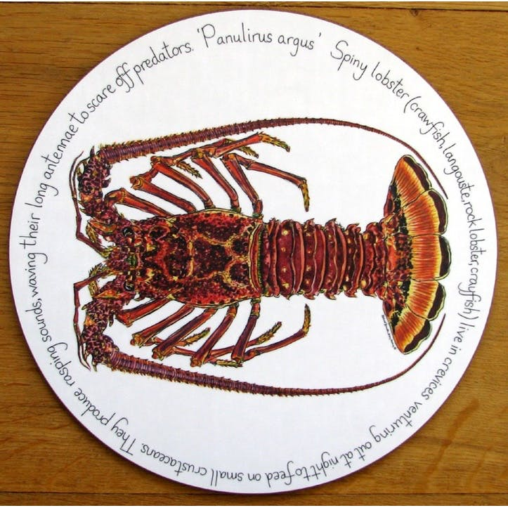 Spiny Lobster Tablemat - 28cm