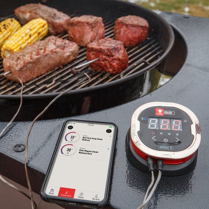 iGrill 2 Precision Barbecuing Tool
