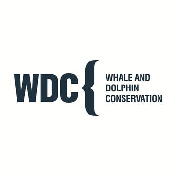 A Donation Towards Whale and Dolphin Conservation