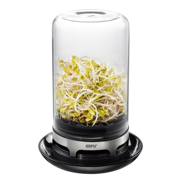 Bivita Sprouting Jar