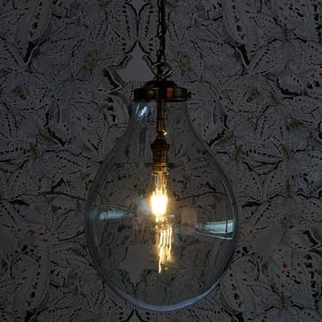 Bulbus Pendant Light in Clear Glass