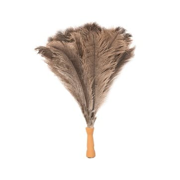 Extendable Ostrich Feather Duster, L2m