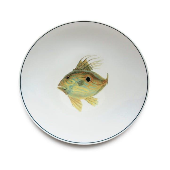 Seaflower John Dory Dinner Plate, 28cm, Yellow