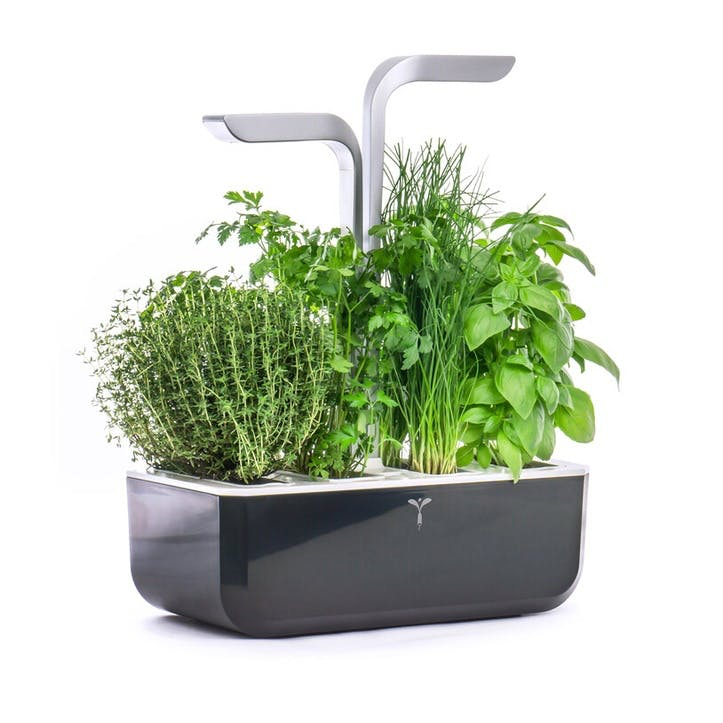 Smart Indoor Garden, Soft Black