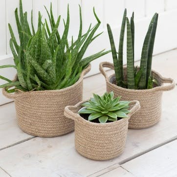 Woven Plant Pots, Set of 3