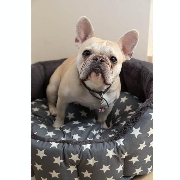 Star Print Reversible Oval Plush Pet Bed, M, Grey