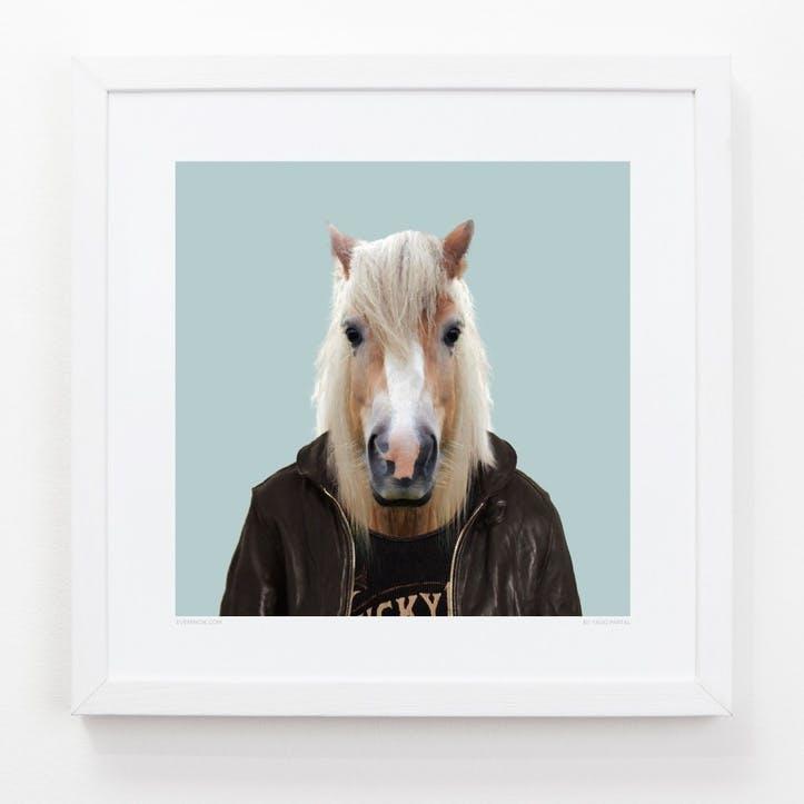 Zoo Portrait Print Horse, 33cm x 33cm