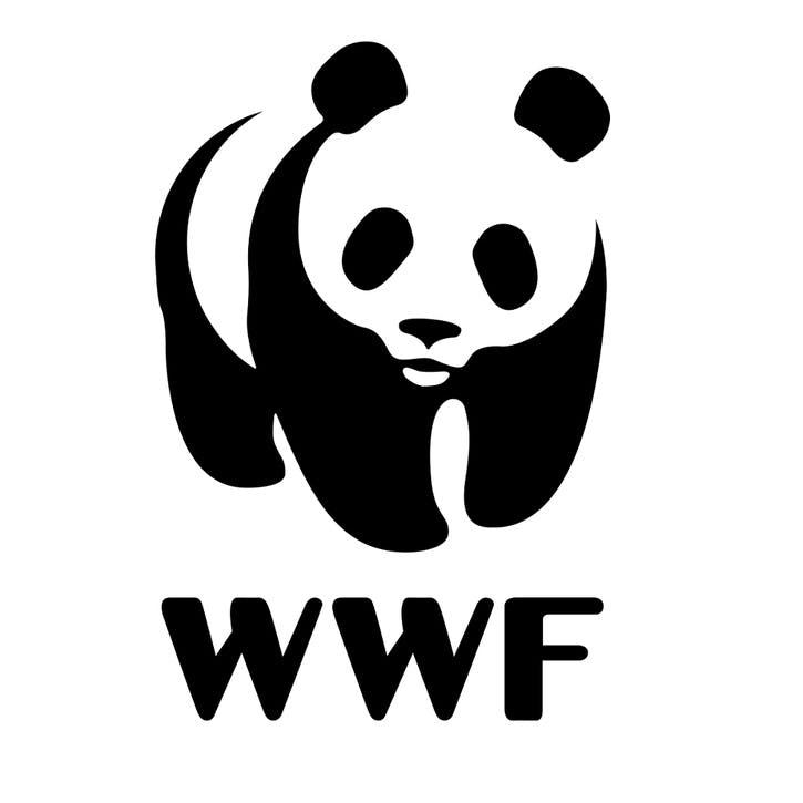 A Donation Towards WWF