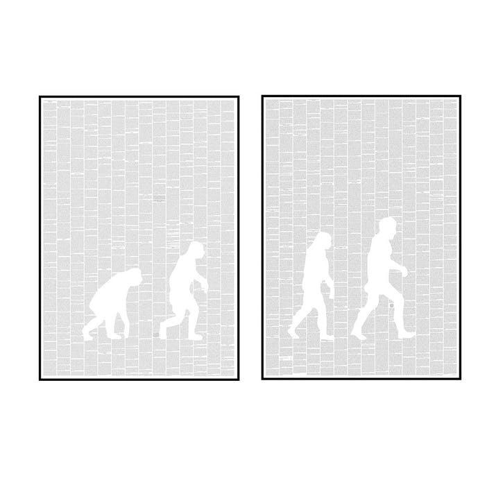 The Origin of Species Ascent of Man Print, Set of 2