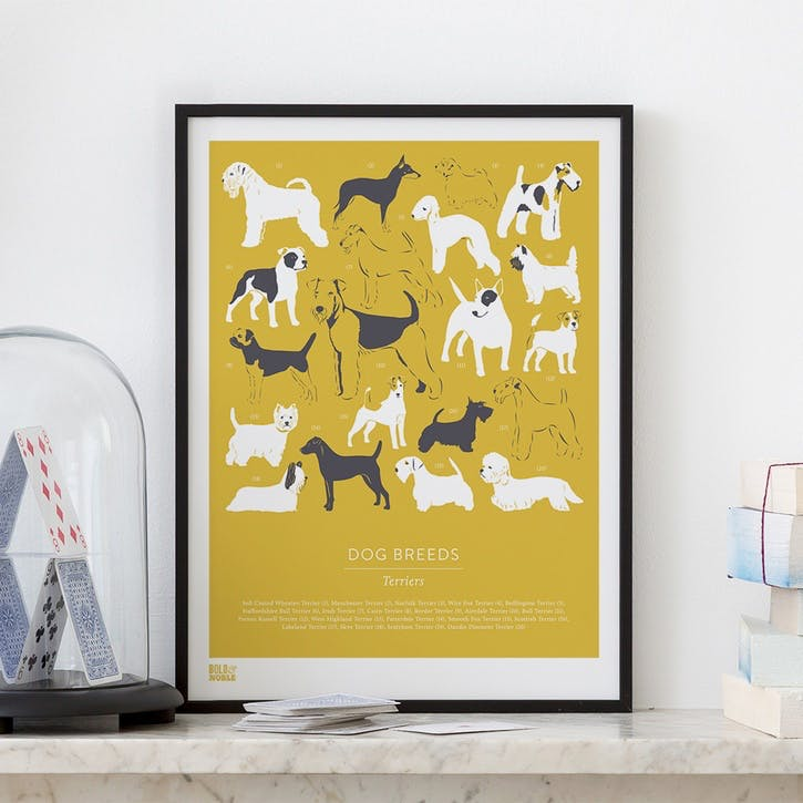 Dog Breeds Terriers Screen Print, 30cm x 40cm, Gold Hay