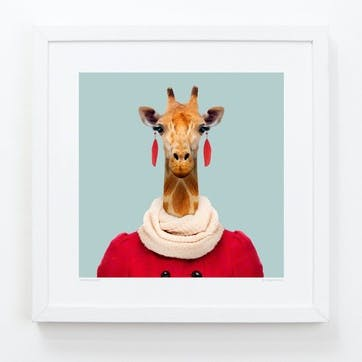 Zoo Portrait Giraffe, 33cm x 33cm