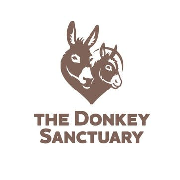 A Donation Towards The Donkey Sanctuary