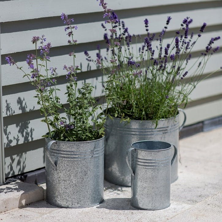 Galvanised Set of 3 Planters