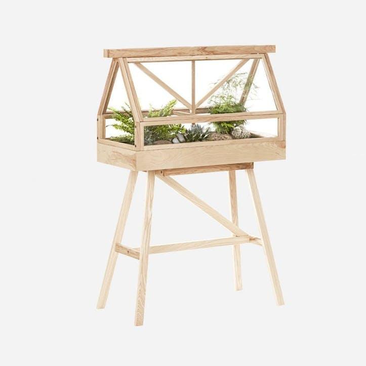 Greenhouse, Indoor Greenhouse, Ash