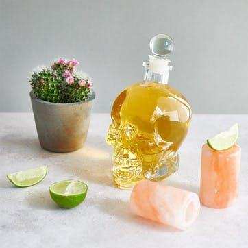 Skull Decanter and Salt Shot Glasses