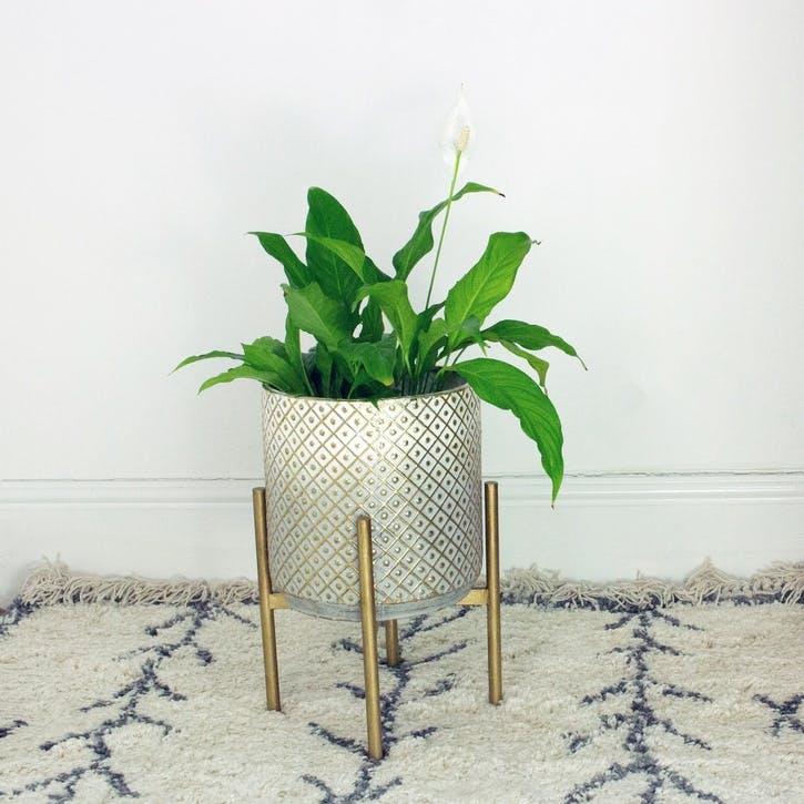 Embossed Metal Planter, Medium, Gold