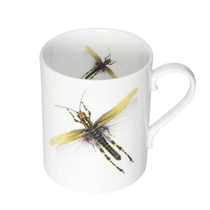 Urban Nature Dragonfly Mug