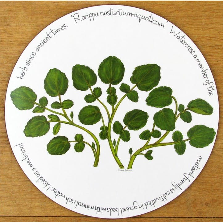 Watercress Tablemat - 28cm
