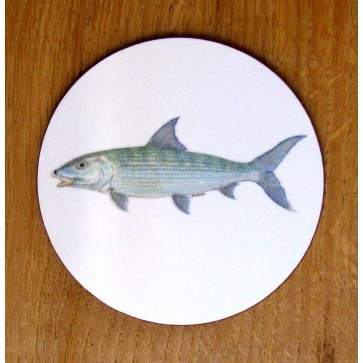 Bonefish Coaster - 10cm