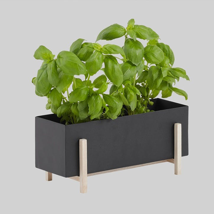 Botanic Box