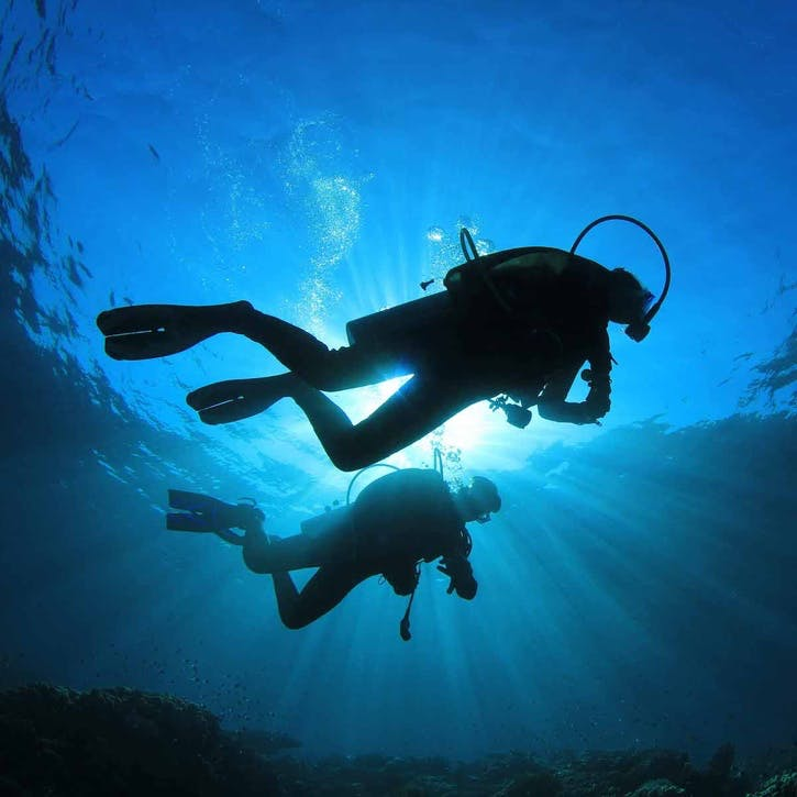 Honeymoon Scuba Diving Trip Contribution £75