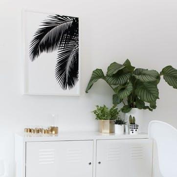 Palm Leaves Print - 50 x 70cm