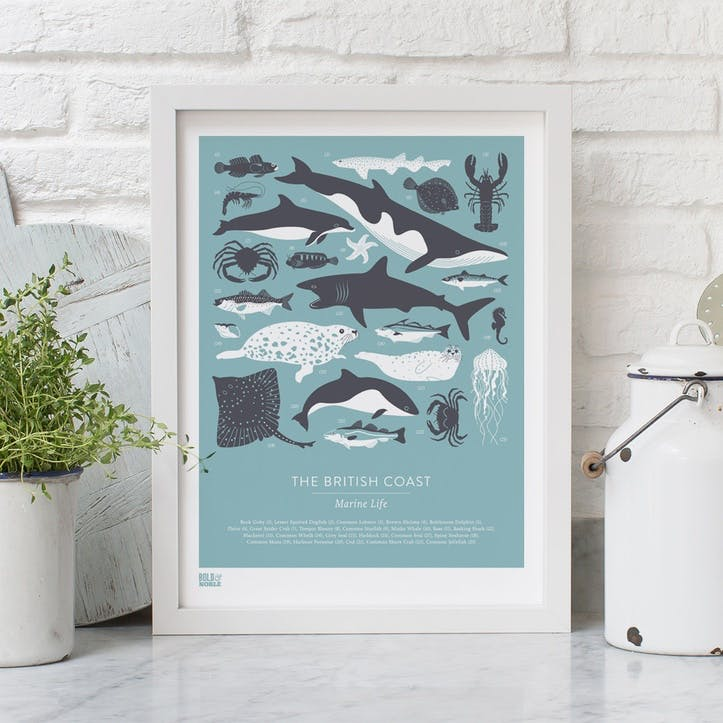British Coast Marine Life Screen Print, 30cm x 40cm, Coastal Blue