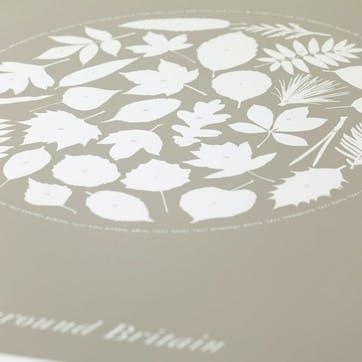 Trees Around Britain Screen Print, 50cm x 70cm, Warm Stone