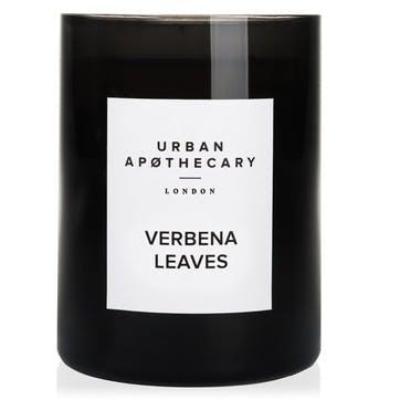 Verbena Leaves Luxury Candle, 300g