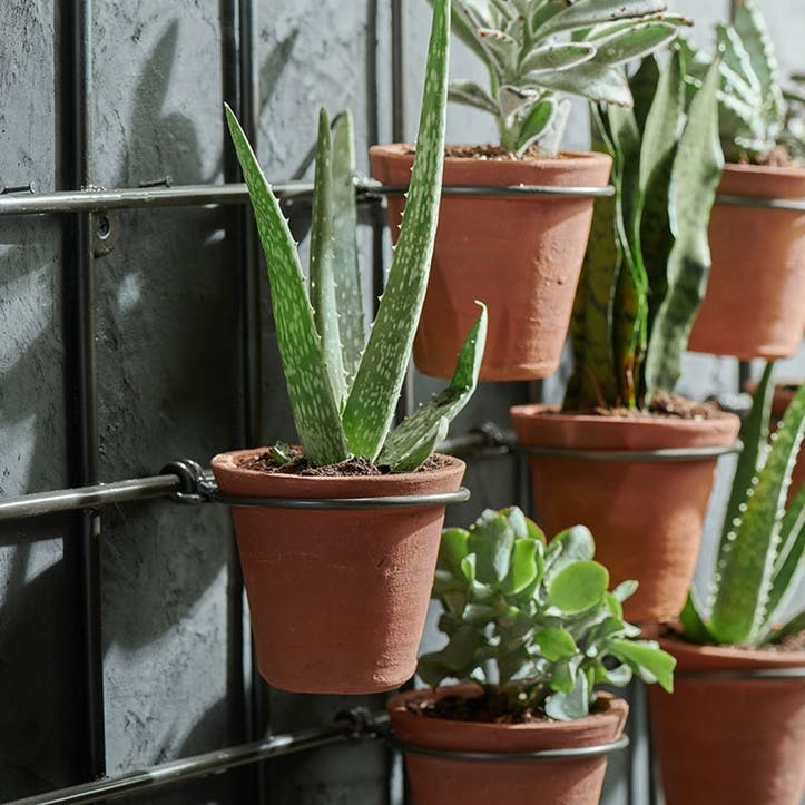 Jara Terracotta Wall Hung Planter