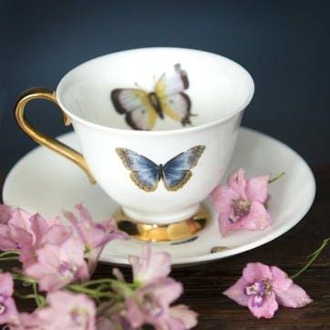 Urban Nature Butterflies Tea Cup & Saucer