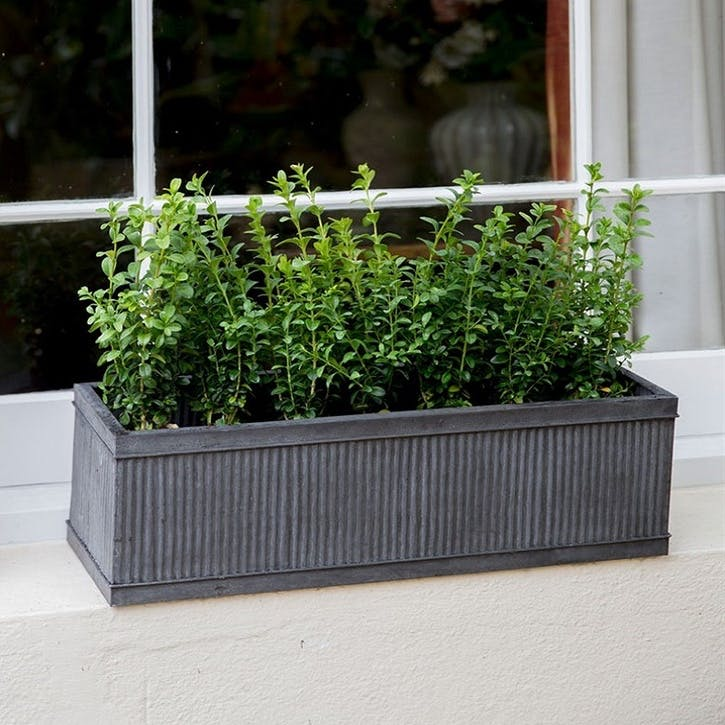 Vence Window Box, Small, Steel