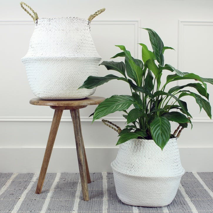 Set of 2 Seagrass Baskets; White